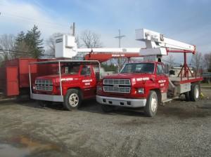 Tree Trucks 002