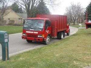 Tree Trucks 083sm
